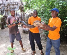Sita Snake Farm open for visitors