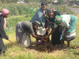 The ladies plant trees as part of their environmental work